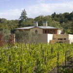 From the Vinyard